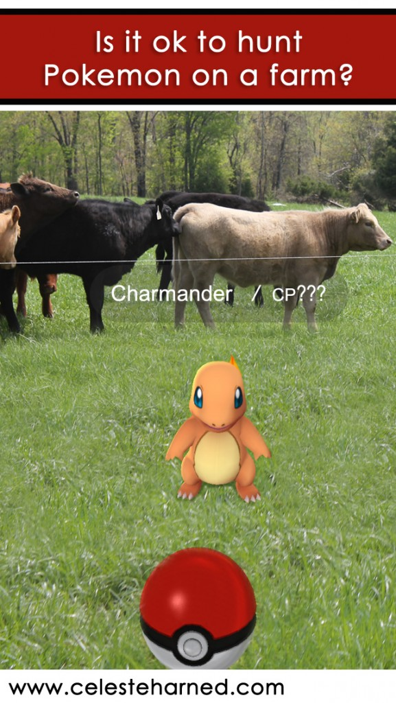 Is it ok to hunt Pokemon on farms?